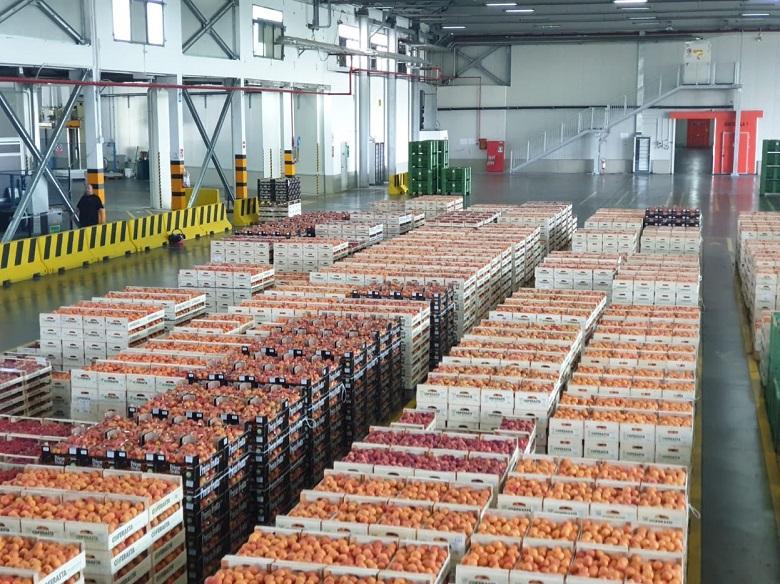 7d18191ca4 Piccola Industria e filiera Agroalimentare, in Coferasta il primo  appuntamento di un nuovo ciclo di incontri